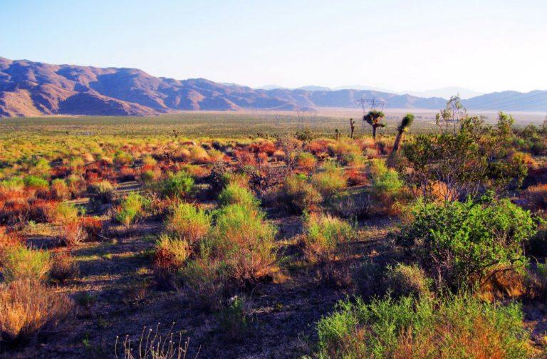 Moreno Valley Project