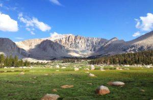 Hydroseeding & Erosion Contro